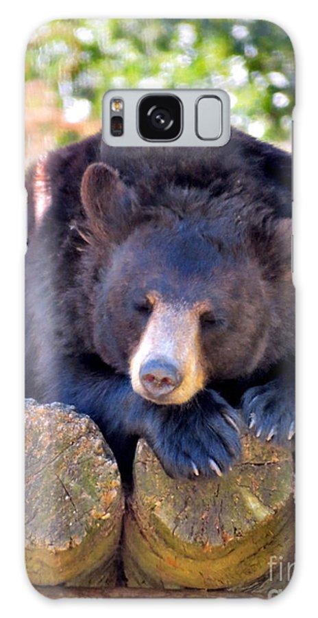 Bear Cuddly Galaxy S8 Case featuring the photograph Sleepy by Art Dingo