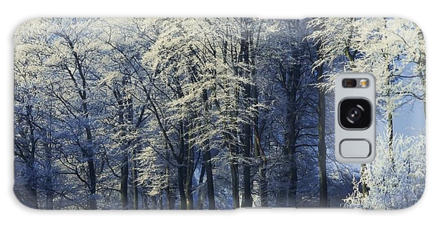 Co Antrim Galaxy S8 Case featuring the photograph Snow Covered Trees In A Forest, County by The Irish Image Collection