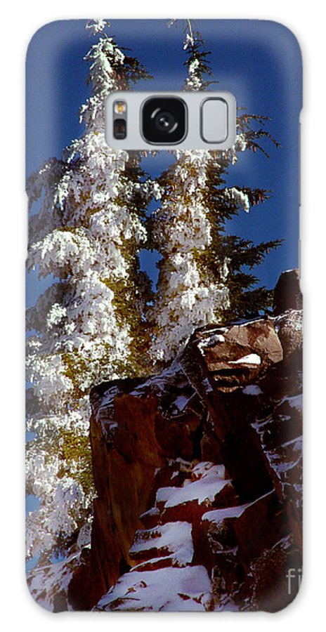 Snow Tipped Trees Galaxy S8 Case featuring the photograph Snow Tipped Trees by Peter Piatt