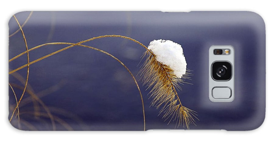 Snow Galaxy S8 Case featuring the photograph Snow Weed by Francesa Miller