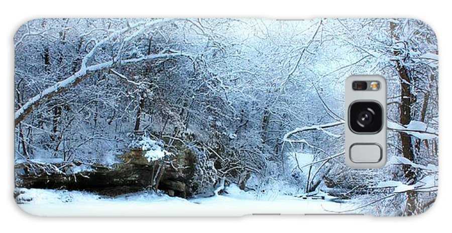 Winter Galaxy S8 Case featuring the photograph Snowy Morn by David Milliner