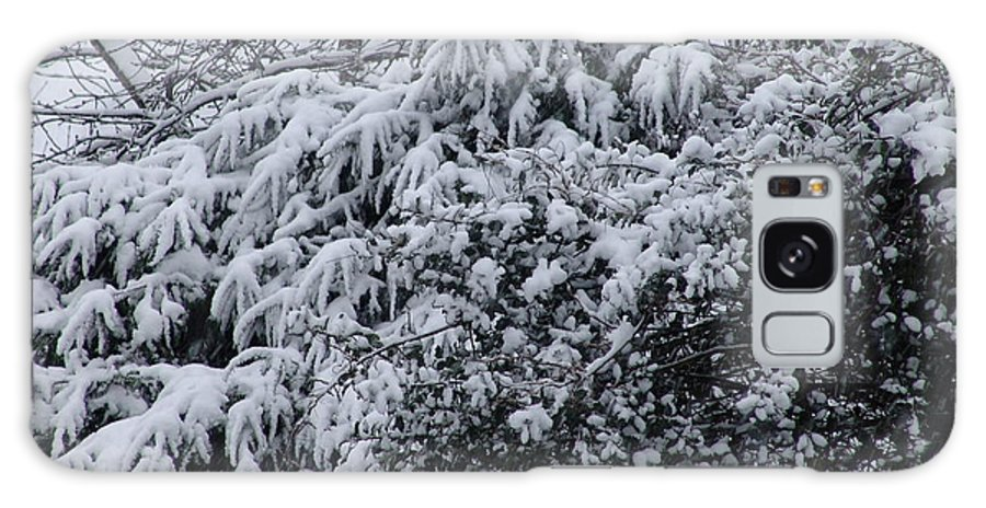 Snow Galaxy S8 Case featuring the photograph Snowy Winter Branches by Ashok Patel