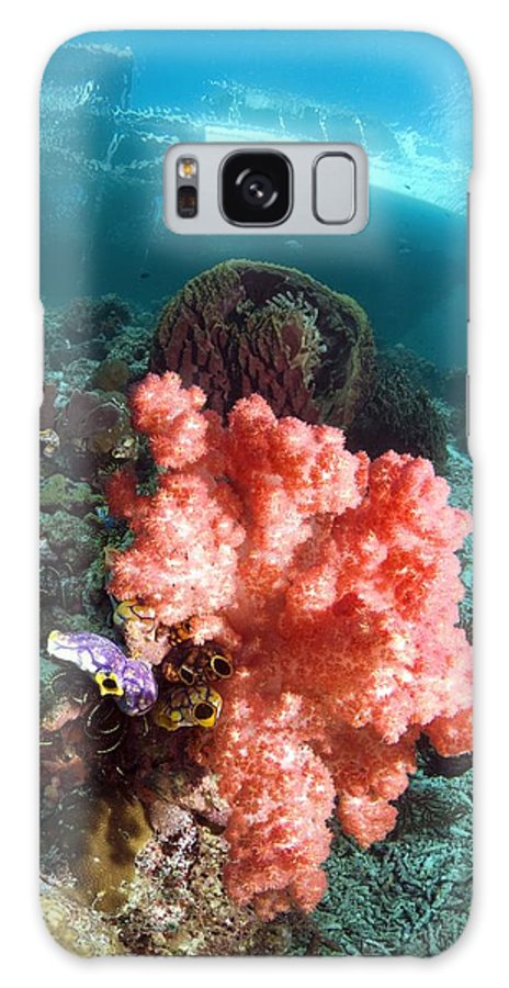 Ink-spot Sea Squirt Galaxy S8 Case featuring the photograph Soft Coral And Sea Squirts by Georgette Douwma