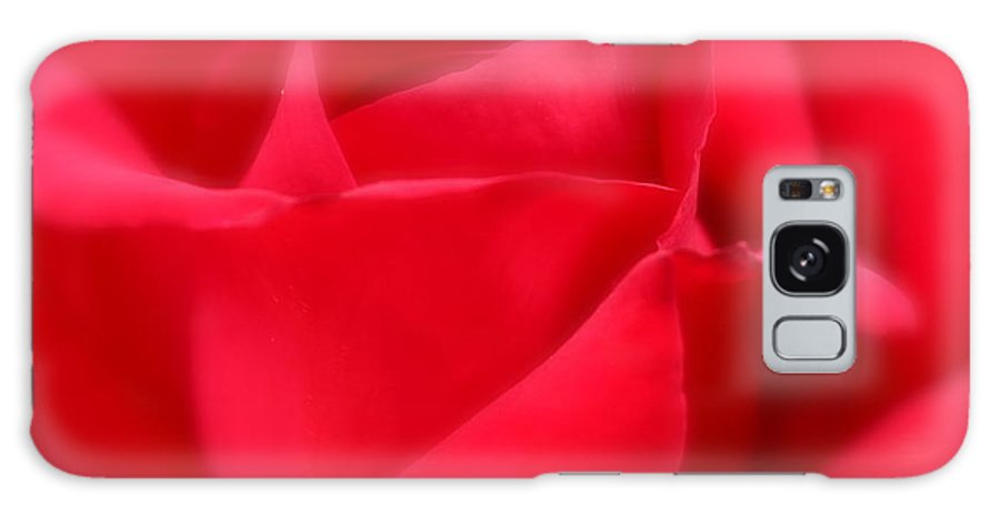 Soft Galaxy S8 Case featuring the photograph Soft Red Rose by Kume Bryant