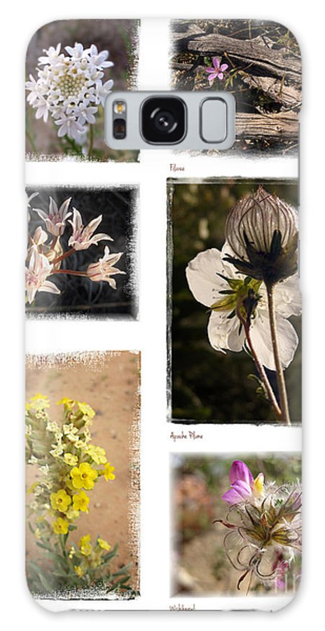 Southwest Galaxy S8 Case featuring the photograph Southwest Wildflower Collection #2 by Judee Stalmack