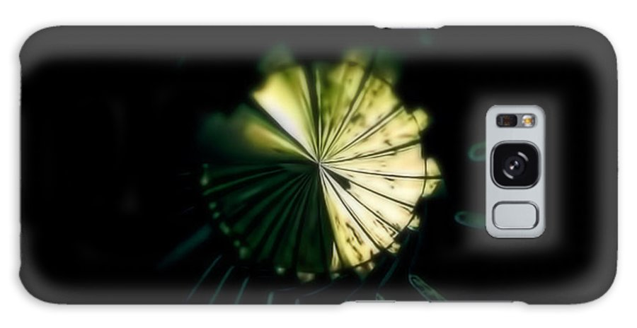 Piano Galaxy S8 Case featuring the photograph Spiraling Piano by Adam Vance