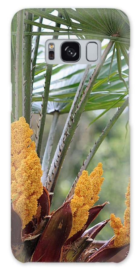 Palm Galaxy S8 Case featuring the photograph Spring Fruit by Suzanne Gaff