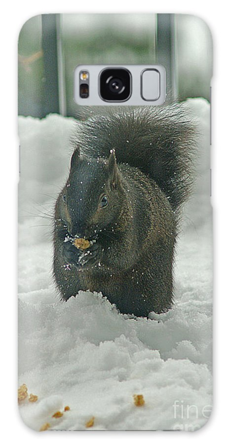 Squirrels Galaxy S8 Case featuring the photograph Squirrel In The Snow by Randy Harris
