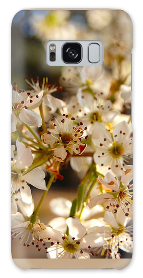 Pear Blossom Galaxy S8 Case featuring the photograph Pear Tree Blossoms by Anjanette Douglas