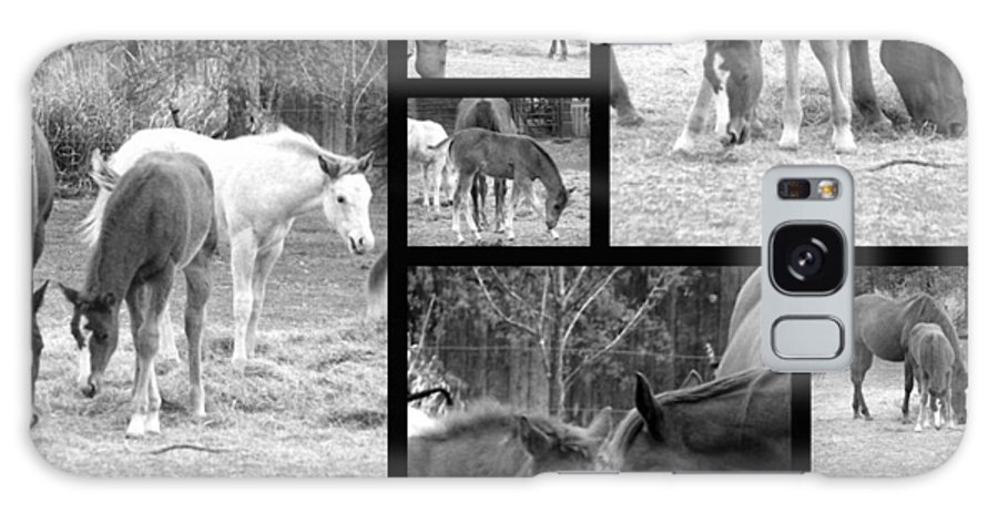 Black And White Photos Of Horses Galaxy S8 Case featuring the photograph Stay Close by Christy Leigh