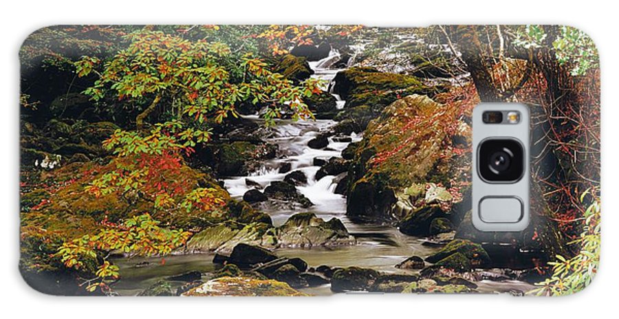 Brook Galaxy S8 Case featuring the photograph Stream Near Glengariff, Co Cork, Ireland by The Irish Image Collection