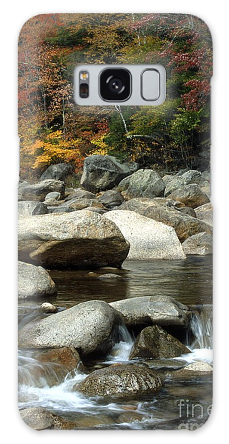 New Hampshire Galaxy S8 Case featuring the photograph Streamside Color by Sandra Bronstein
