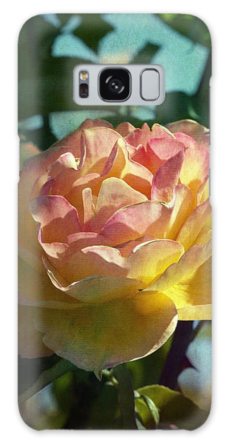 Photo Collage Galaxy S8 Case featuring the photograph Strike It Rich Rose by Linda Dunn