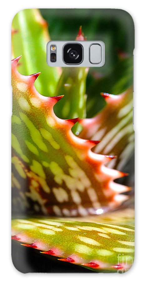 Succulent Galaxy S8 Case featuring the photograph Succulents With Spines by Judi Bagwell