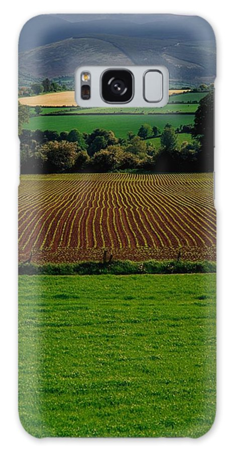 Beauty In Nature Galaxy S8 Case featuring the photograph Sugar Beet by The Irish Image Collection