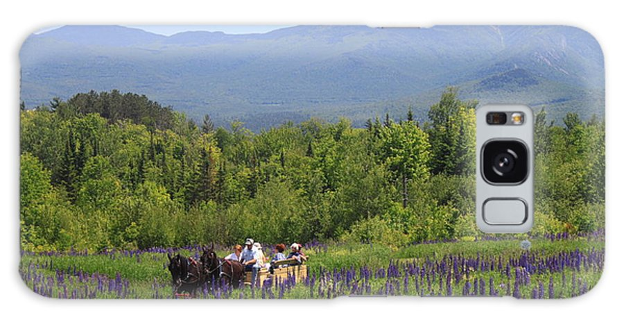 Sugar Hill Galaxy S8 Case featuring the photograph Sugar Hill Horse Tour And Lupines by John Burk
