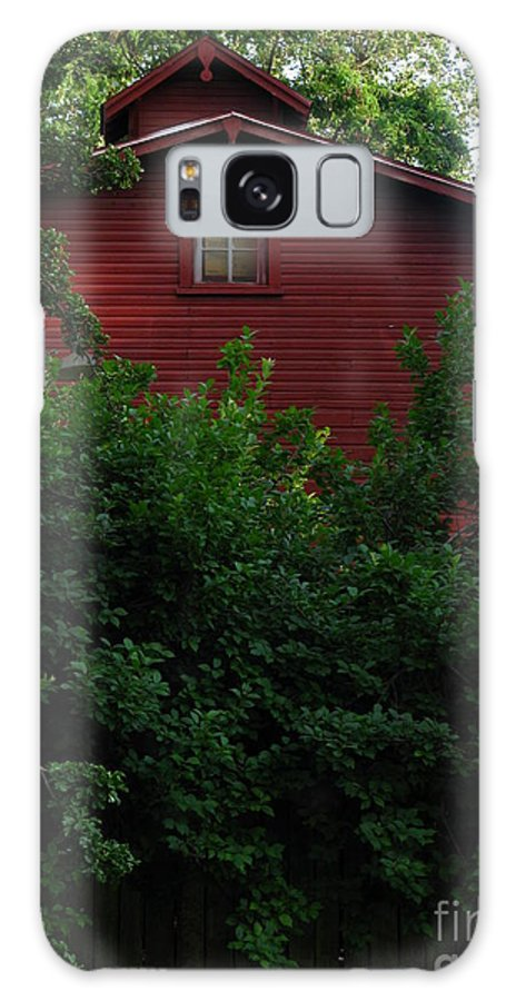 Patzer Galaxy S8 Case featuring the photograph Summer Look by Greg Patzer