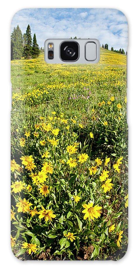 Idaho Galaxy S8 Case featuring the photograph Summer Splendor In Yellowstone by D Robert Franz