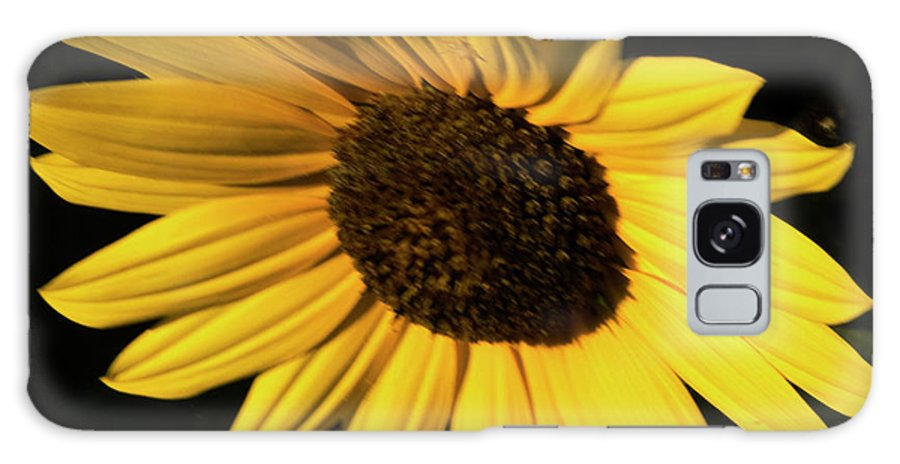 Sunflower Galaxy S8 Case featuring the photograph Sunflower At Dusk by Ruth H Curtis