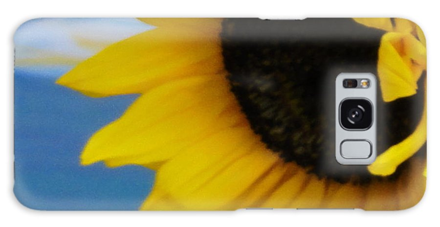 Sunflower Galaxy S8 Case featuring the photograph Sunflower One by Shannon Grissom