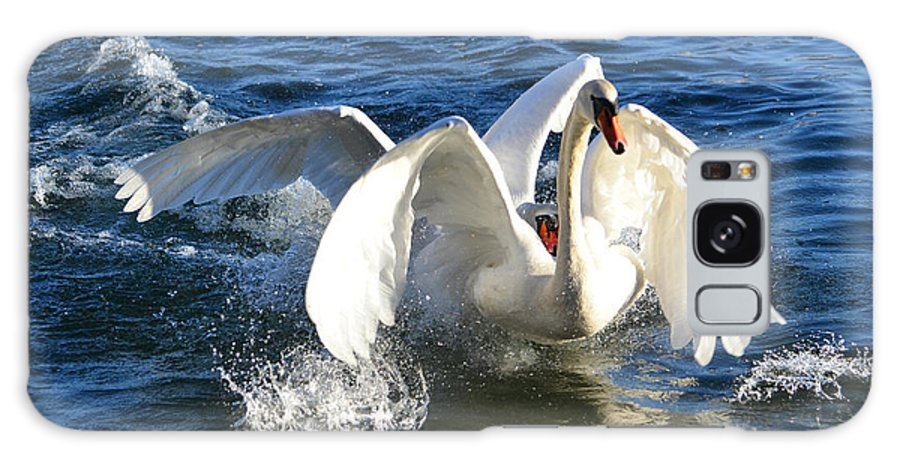 Swan Galaxy S8 Case featuring the photograph Swans Playing by Mats Silvan