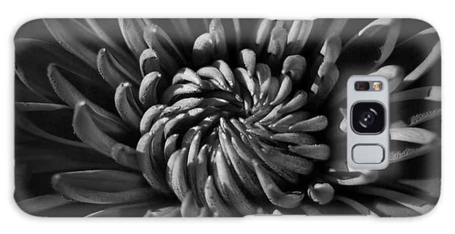 Yhun Suarez Galaxy S8 Case featuring the photograph Swirl by Yhun Suarez