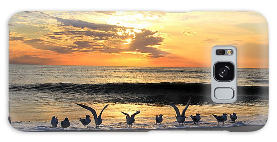Ocean Photo Prints Galaxy S8 Case featuring the photograph Taking Flight by Brenda Deem