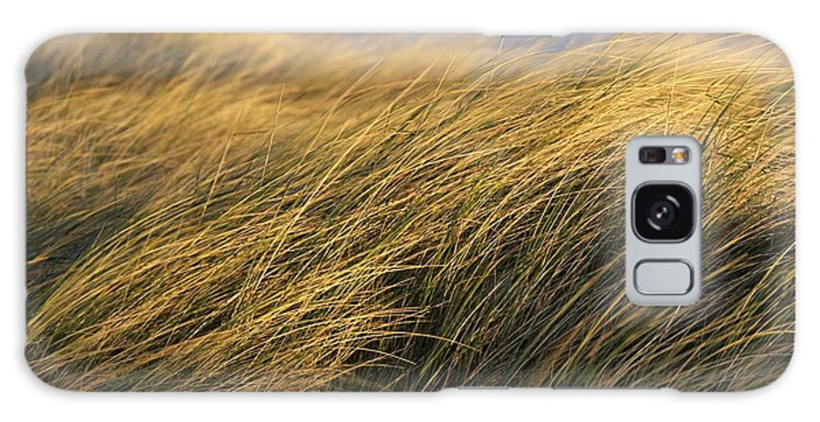Bending Galaxy S8 Case featuring the photograph Tall Grass Blowing In The Wind by Peter McCabe