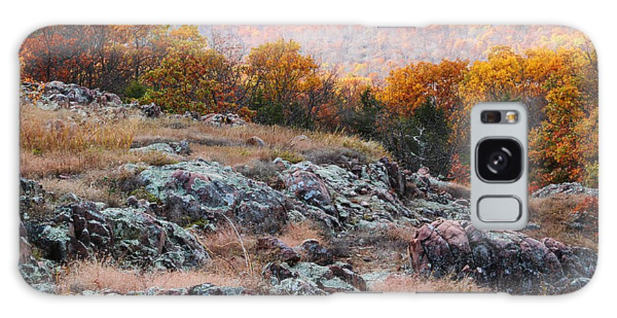 Landscape Galaxy S8 Case featuring the photograph Taum Sauk Mountain Glade I by Greg Matchick