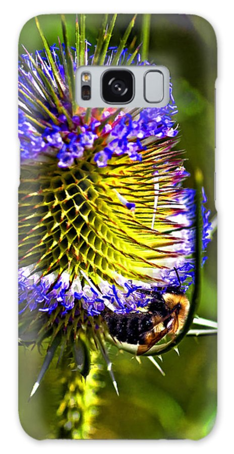 Bee Galaxy S8 Case featuring the photograph Teammates II by Steve Harrington