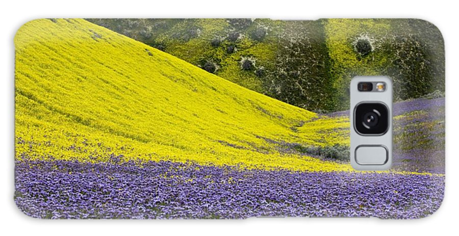 Hillside Daisy Galaxy S8 Case featuring the photograph The Temblor Range, California by Bob Gibbons