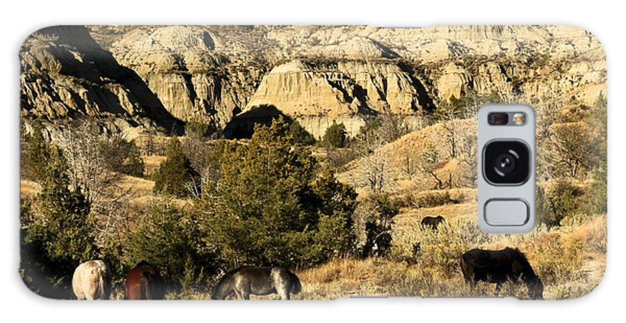 Theodore Roosevelt National Park Galaxy S8 Case featuring the photograph The Wild Ones by Adam Jewell