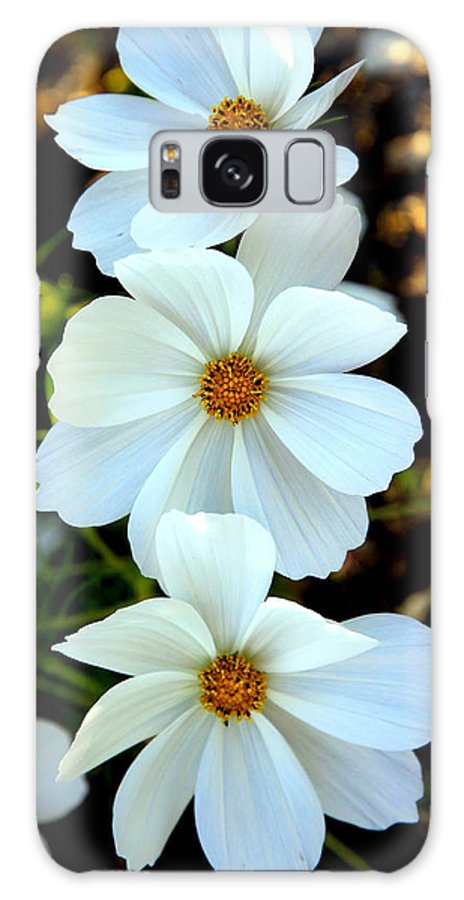 Flowers Galaxy S8 Case featuring the photograph Three White Flowers by Steve McKinzie