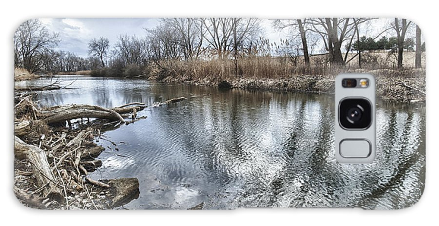 Tifft Farm Galaxy S8 Case featuring the photograph Tifft Nature Preserve by Phil Pantano
