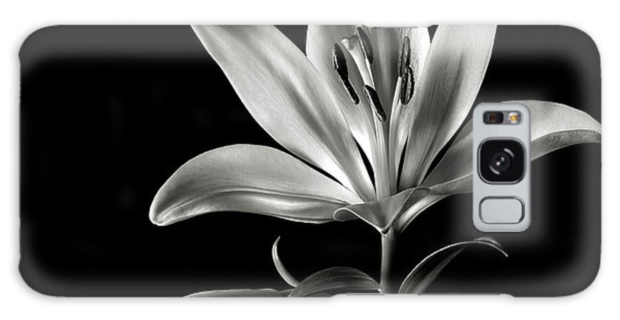 Flower Galaxy Case featuring the photograph Tiger Lily In Black And White by Endre Balogh