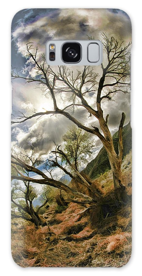 Fine Art Photographers Galaxy S8 Case featuring the photograph Tilted Trees by Blake Richards