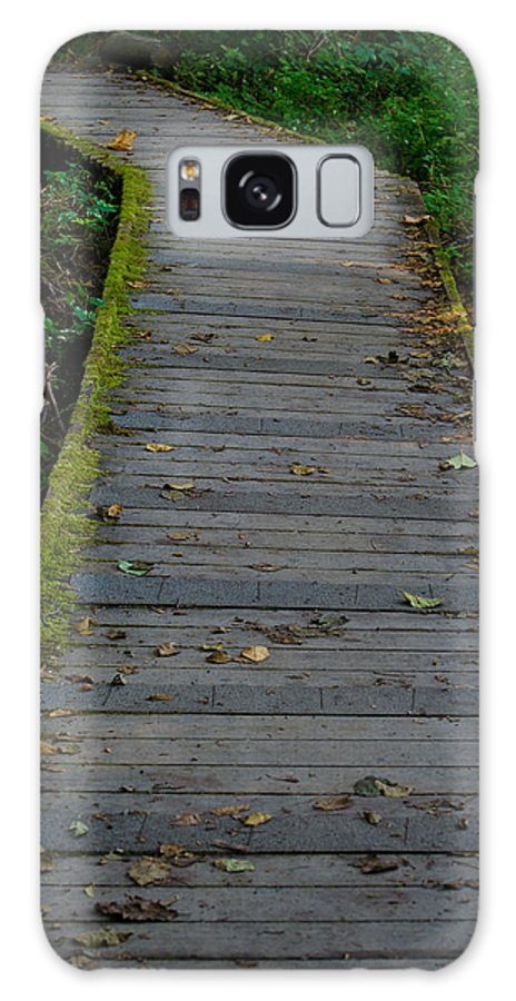 Walk Galaxy S8 Case featuring the photograph Tolmie Walkway by Tikvah's Hope