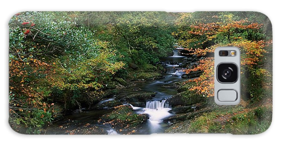 Autumn Leaves Galaxy S8 Case featuring the photograph Torc Waterfall, Ireland,co Kerry by The Irish Image Collection