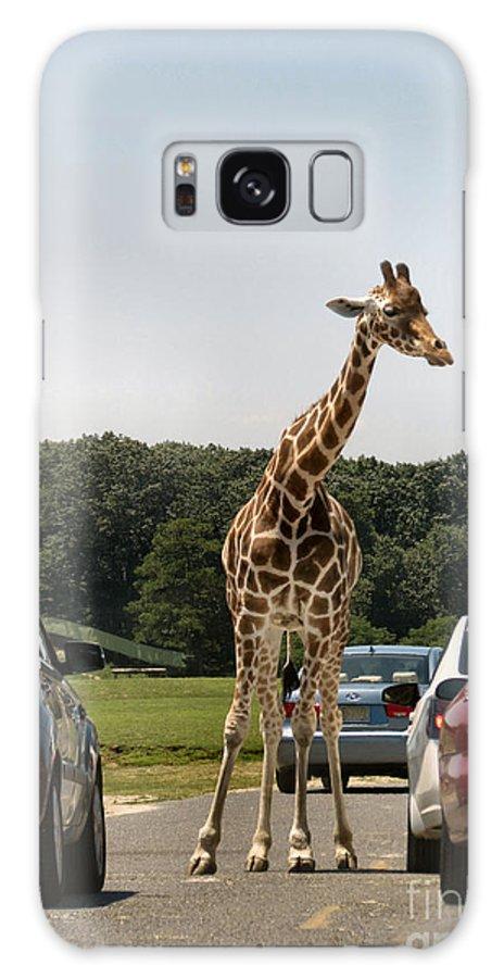 Giraffe Galaxy S8 Case featuring the photograph Traffic Jam by Art Dingo