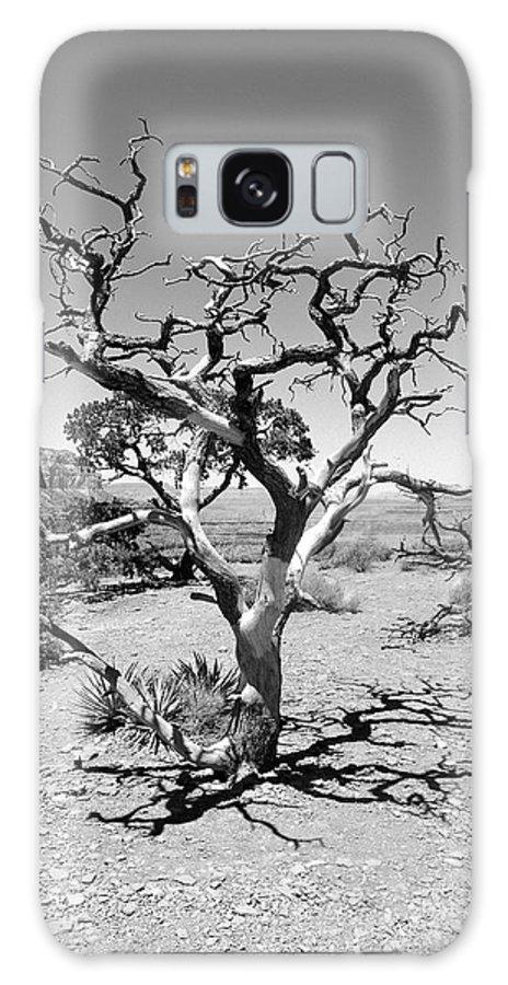 Tree Galaxy S8 Case featuring the photograph Tree At Cedar Ridge Bw by Julie Niemela