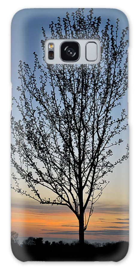 Tree Galaxy S8 Case featuring the photograph Tree At Sunset by Wayne King