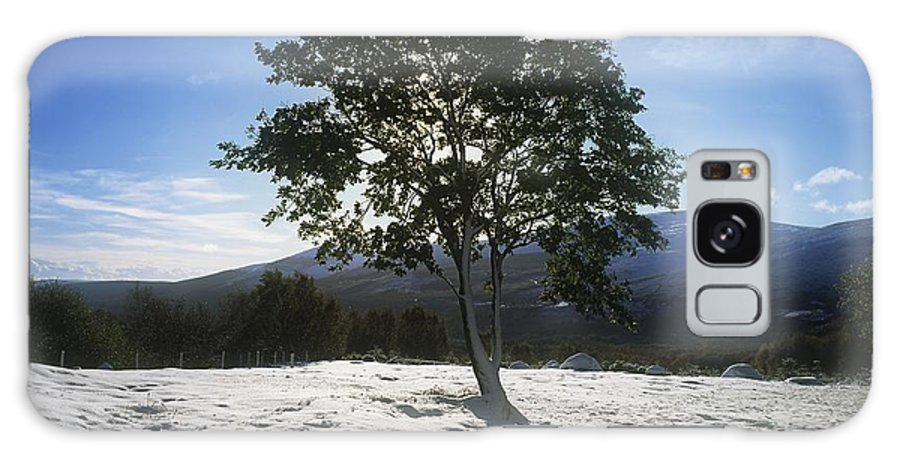 Co Wicklow Galaxy S8 Case featuring the photograph Tree On A Snow Covered Landscape by The Irish Image Collection