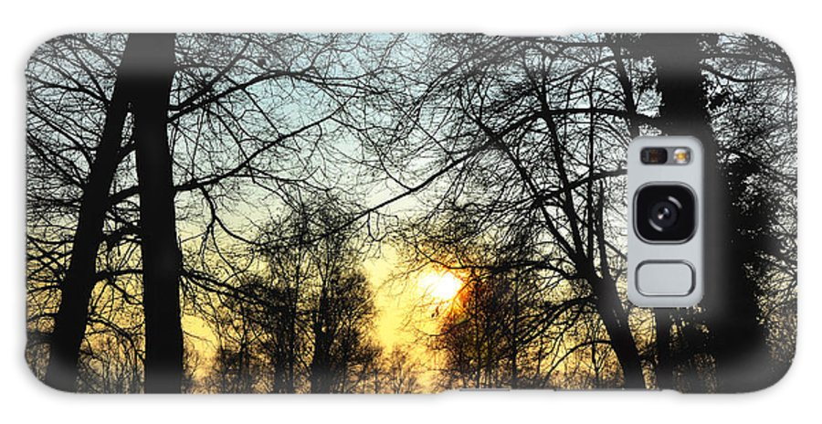 Tree Galaxy S8 Case featuring the photograph Trees And Sun In A Foggy Day by Mats Silvan