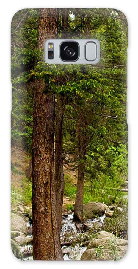 Green Galaxy S8 Case featuring the photograph Trees By The Stream by Peggy Starks