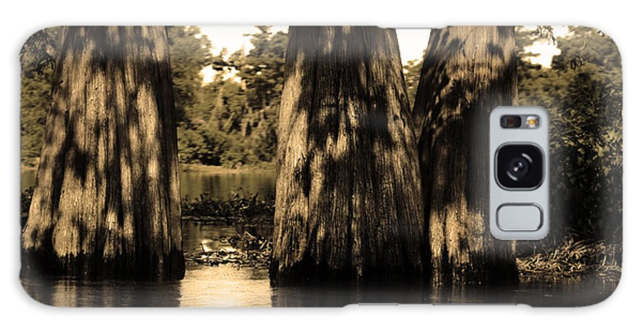 Swamp Galaxy S8 Case featuring the photograph Trees In The Basin by Maggy Marsh