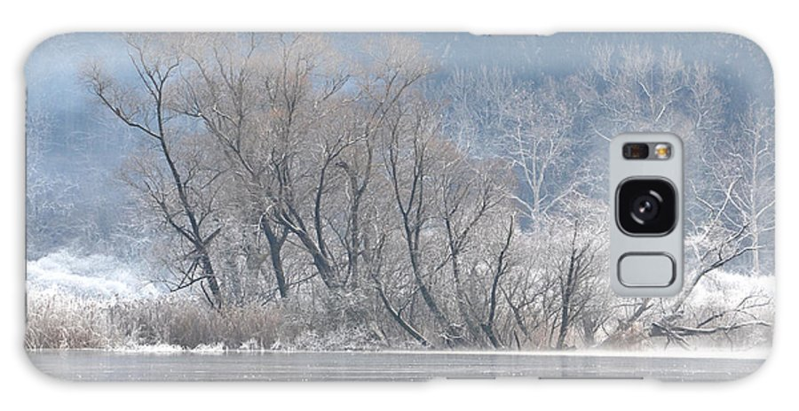 Ice Galaxy S8 Case featuring the photograph Trees On A Frozen Lake by Mats Silvan