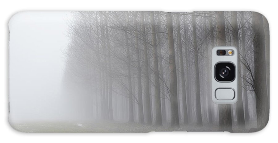 Trees Galaxy S8 Case featuring the photograph Trees With Fog And Snow by Mats Silvan