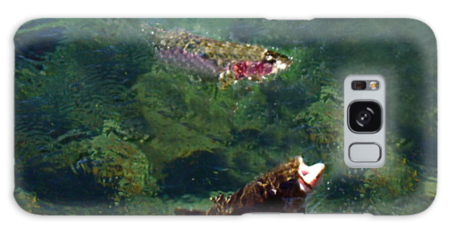 Trout Galaxy S8 Case featuring the photograph Trout Rising To Feed by Nick Kloepping