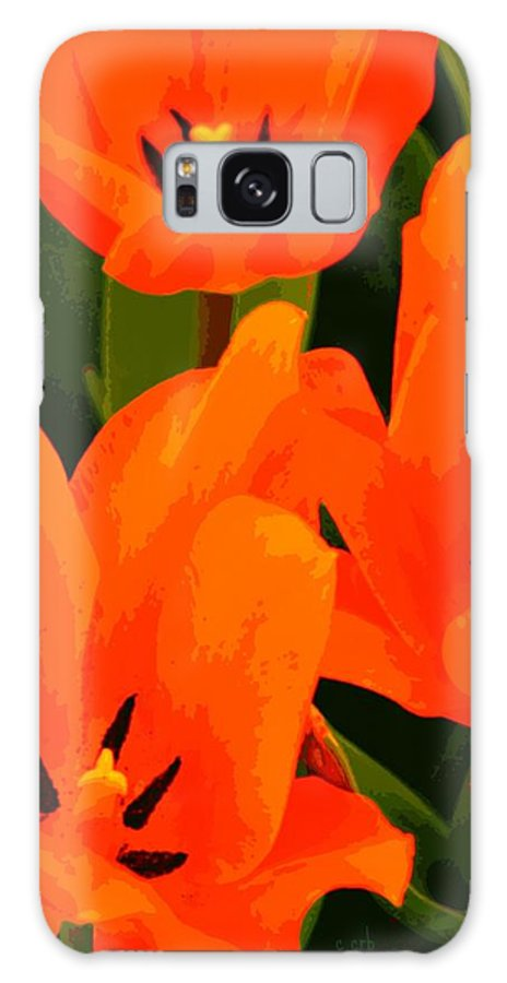 Nature Galaxy S8 Case featuring the photograph Tulip Trio by Chris Berry