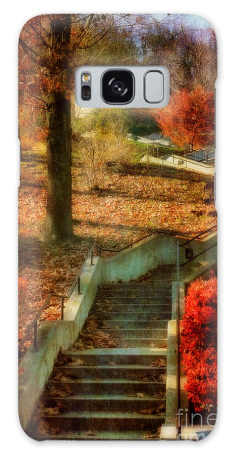 Stairs Galaxy S8 Case featuring the photograph UP by Lois Bryan